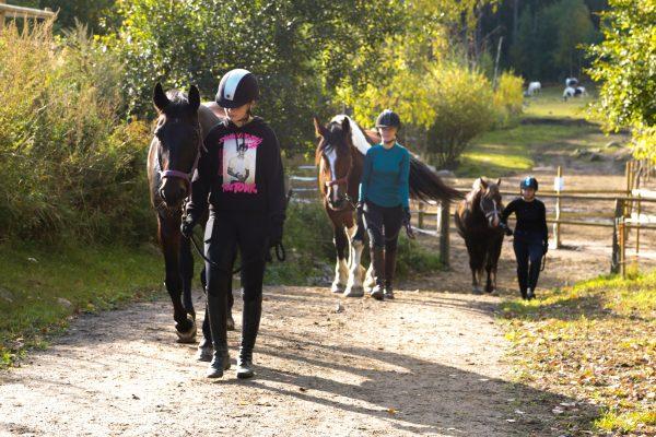 Elever från Prolympia som är ute och går med hästar